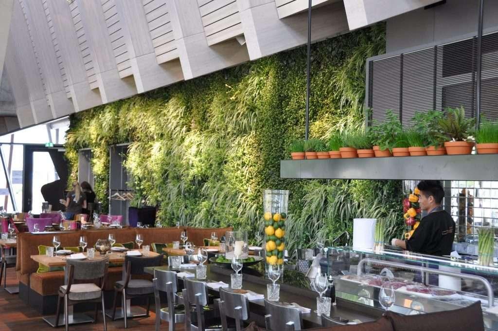 plantas en un restaurante